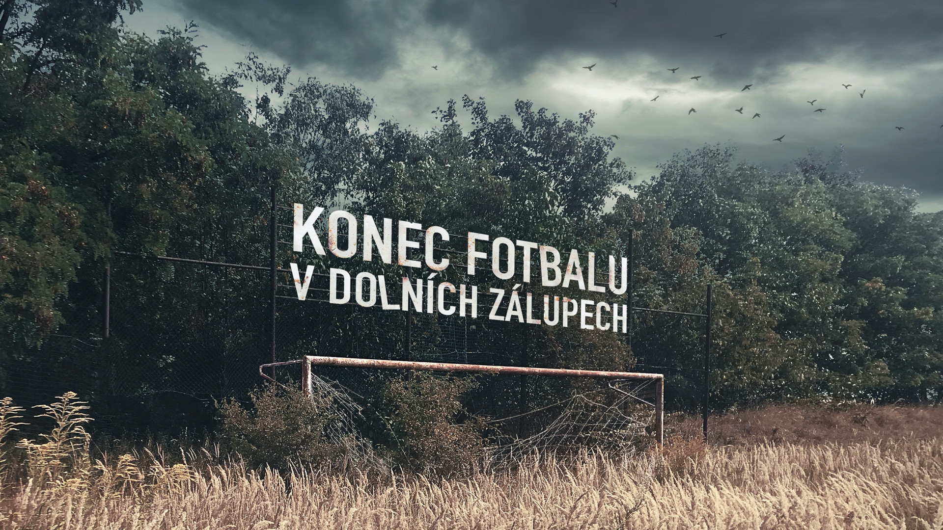 Czech amateur football was slowly dying and Gambrinus refused just to watch it go.